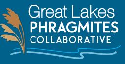 The Great Lakes Phragmites Collaborative logo