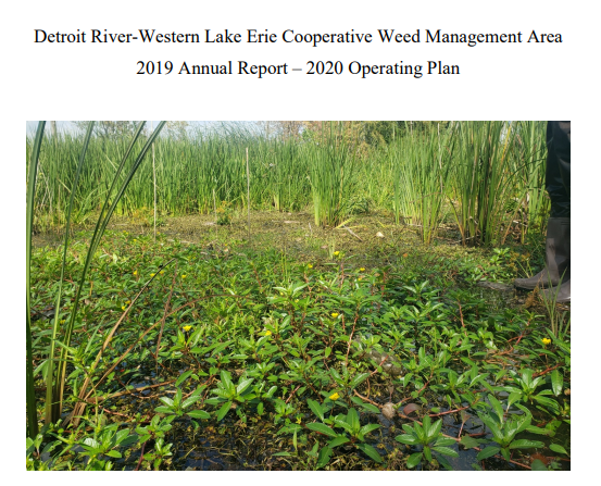 The cover page from the 2019 DR-WLE CWMA Annual Report.