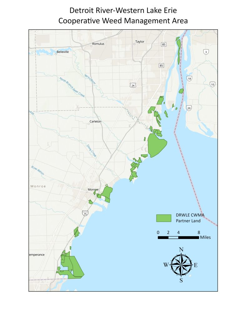 A map outlining Monroe and Wayne Counties, the Detroit River, and Lake Erie, with CWMA Partner Lands highlighted in green
