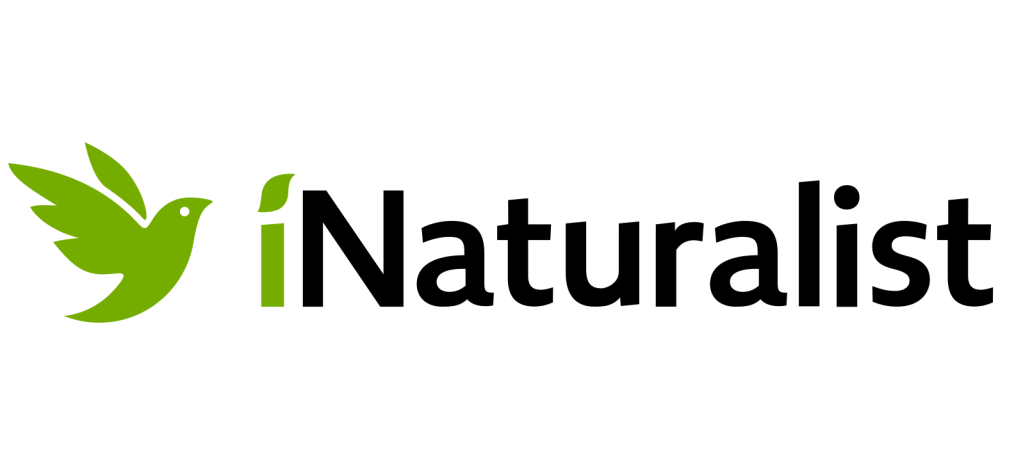 The iNaturalist logo